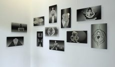 From here until now. 20 Years Artists in the Salzmannbau. Kunstraum Dusseldorf, 2014. Works of M. Thyes: Global Vulva Plates (2014), UV prints on alu dibond.